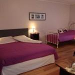 Chambre 'Hortensia' avec deux lits