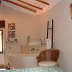 bathroom eze suite village .JPG