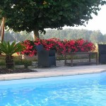 piscine et hamac.jpg